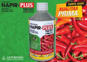 Asterindo Insektisida Napir Plus 150EC