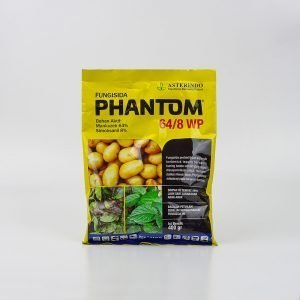 Asterindo Phantom 64:8 WP 400gr